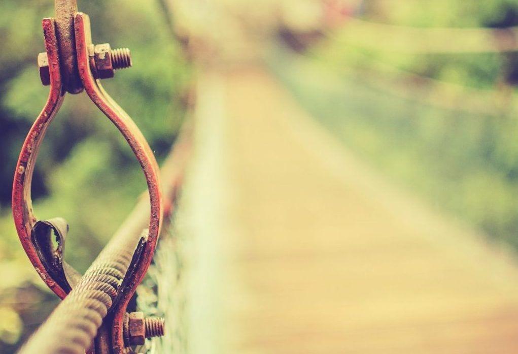 Jungle bro - ukendt sted - rejser