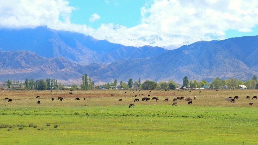 Kirgisistan - natur, bjerge - rejser