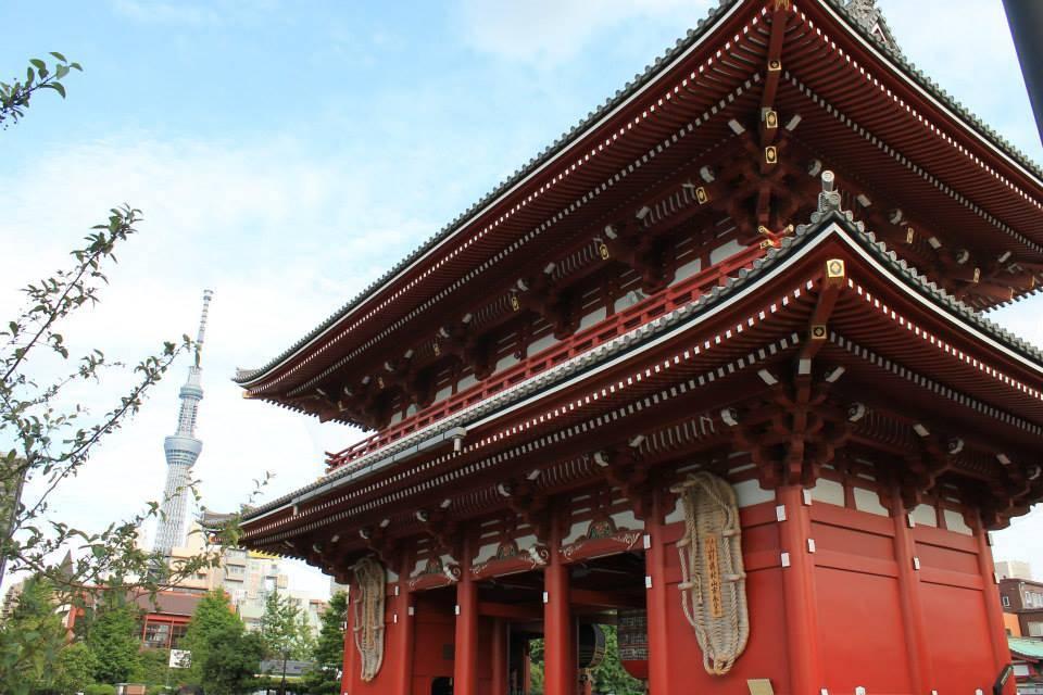 Japan - Tokyo, Meiji Jingu Shrine - rejser