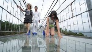 Kina - glasbro, rejsesjov - rejser