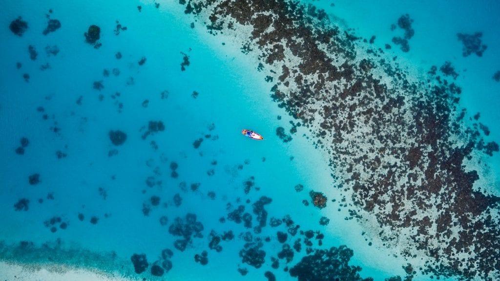 Australien - koralrev - rejser