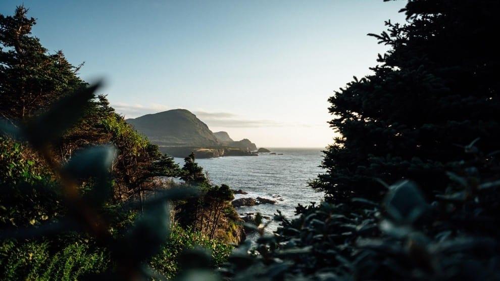 Canada - Newfoundland - rejser