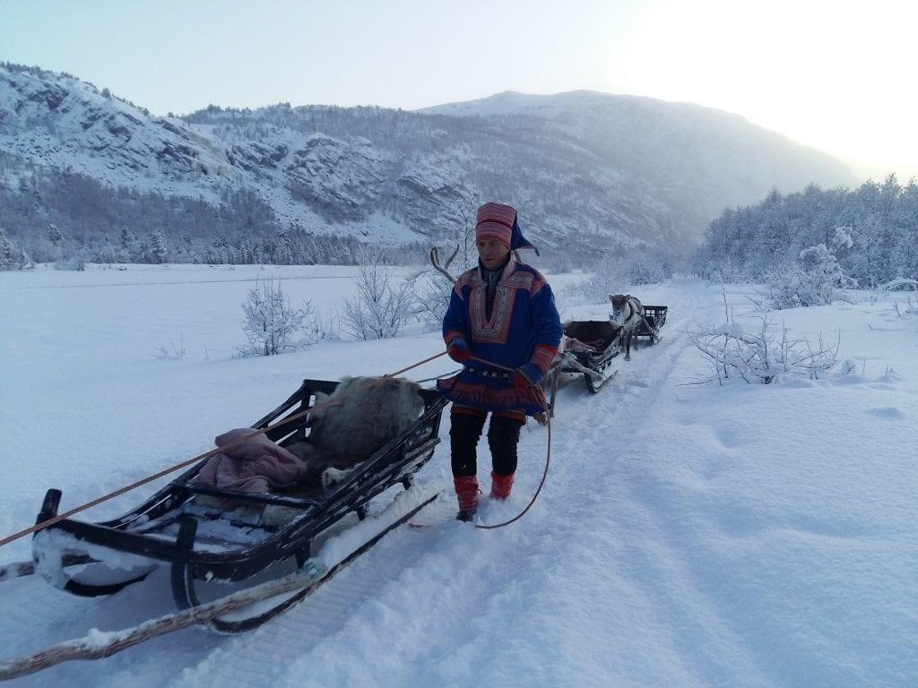 Norge - Alta, hundeslæde - rejser