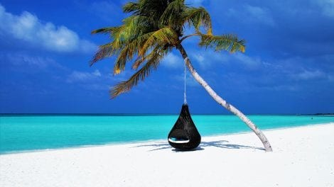 Maldiverne - strand - rejser