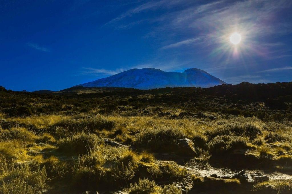 Tanzania - Kilimanjaro (Rickshaw3) - rejser