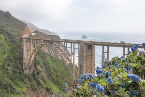 USA - kyst natur big sur - rejser