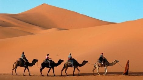 Ørken - Marokko - Rejser