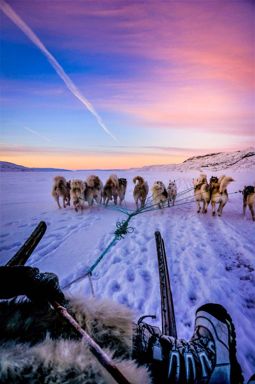 Jesper Frank - Kangerlussuaq - grønland - hundeslæde - sne