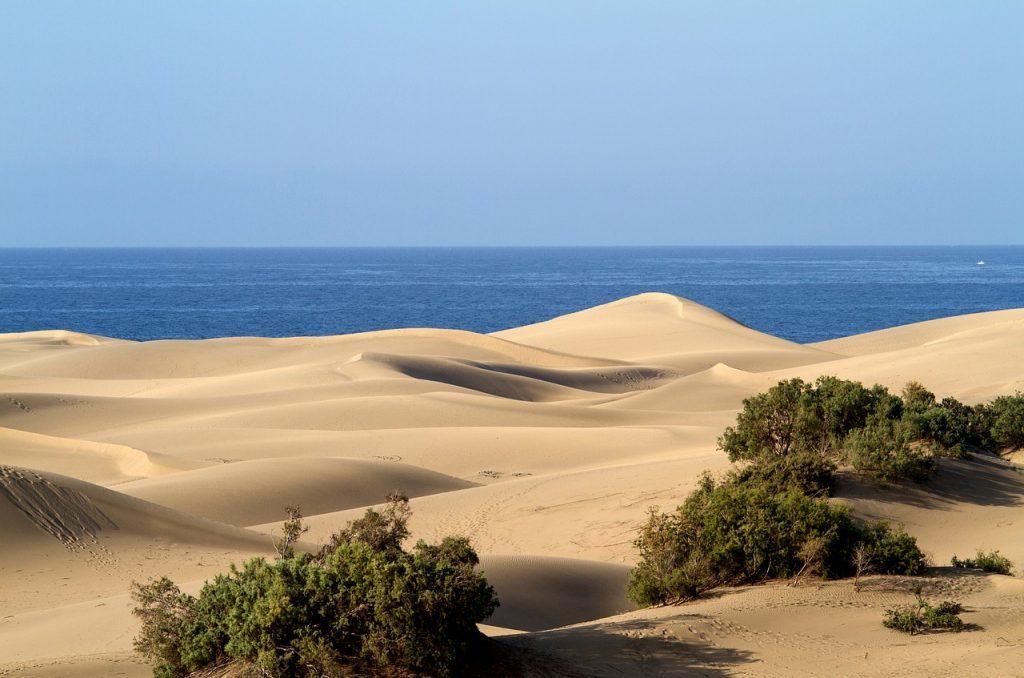 Spanien - Gran Canaria - rejser